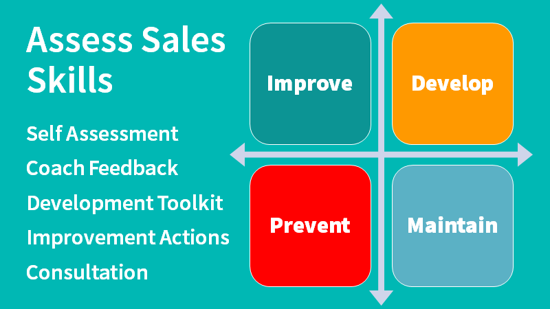 Sales Skills Assessment Diagram