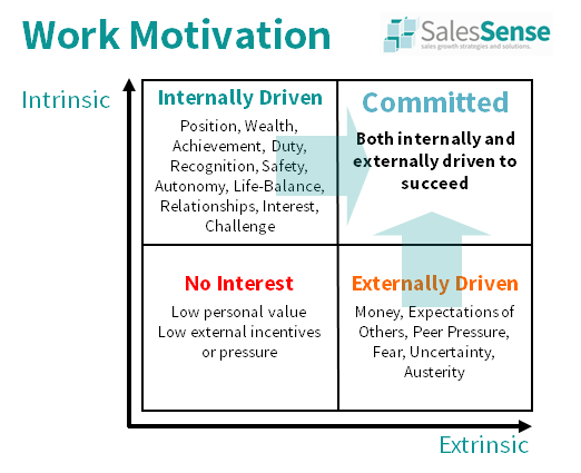 Sales Motivation Assessment