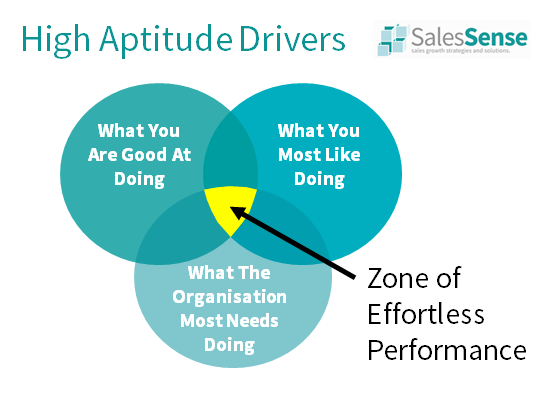 Diagram illustrating the zone of effortless performance to support our sales and marketing assessment descriptions page..